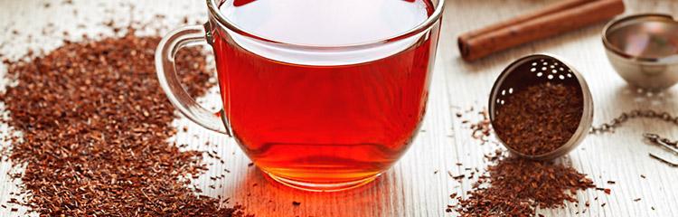 Bio Rooibusch Tee